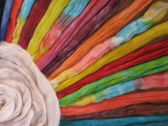 dyed Dye-Lishus® cotton sliver